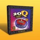 20Q GAME